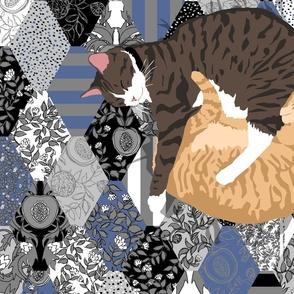 Blue Cat Portrait