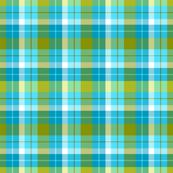 pop-plaid-blue