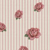 pinstripe___roses_