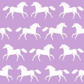 Horses_g_lavender_shop_thumb