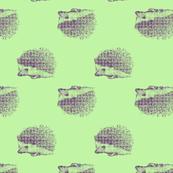 hedgehog_6