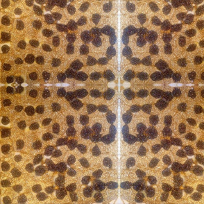 #FurFree Cheetah