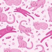 Pink Playful Kittens