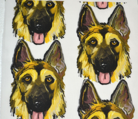 German Shepherd Dogs Portraits on White