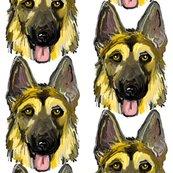 German_shepherd_dogs_portraits_on_white_24_rev__shop_thumb