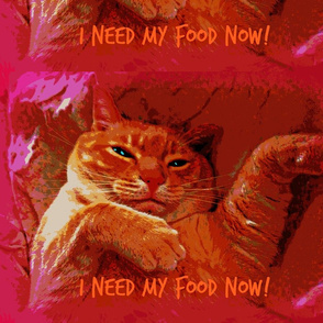 Feline Dietary Demands