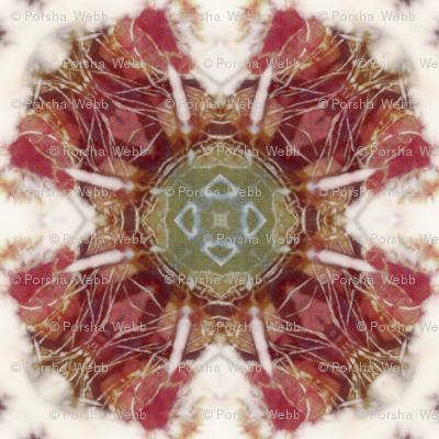Kaleidoscope Tie Dye_2