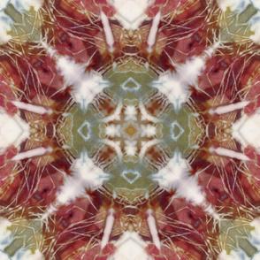 Kaleidoscope Tie Dye_1