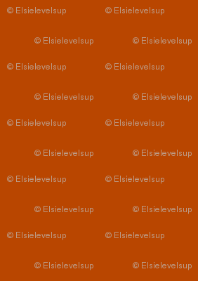 E19 - #B94600 - All Colours from Spoonflower Colour Map v2.1