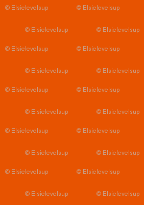 E21 - #E75301 - All Colours from Spoonflower Colour Map v2.1