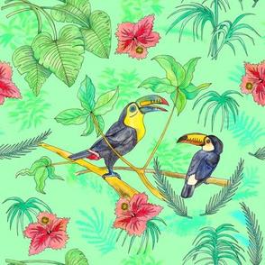 Watercolour Toucans