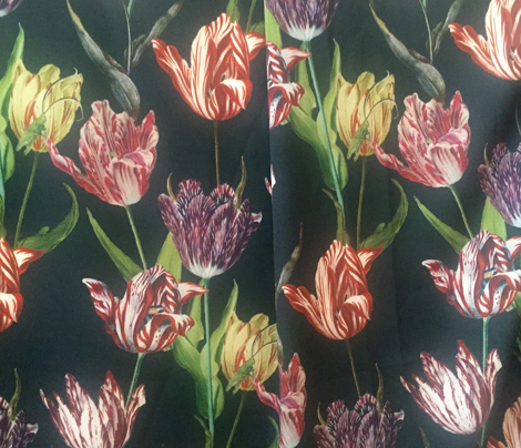 tulip mania on a black ground