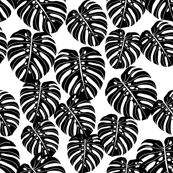 monstera // palm print tropical palm black and white kids summer 2016 palm print trend