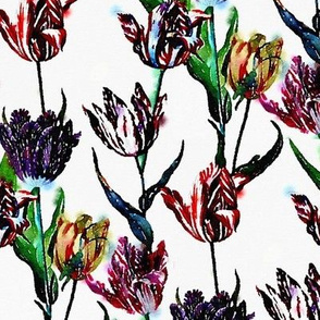 Watercolor tulips on a white ground