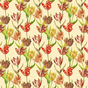 Antique watercolor tulips