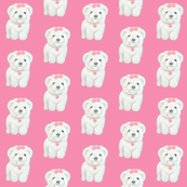 Bichon Frise Puppy on pink