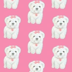 Bichon Frise Puppy // Poodle // Coton de Tulear // Maltese // Shih Tzu // Löwchen // Havanese //  Bolognese puppy // Pink // Dog // Puppy // By Magenta Rose Designs