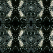 Zebra Butterfly Shields
