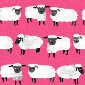 sheep // farm animals hot pink nursery