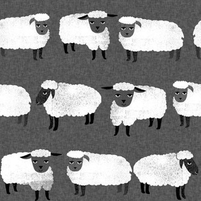 sheep // wool knitting animal farm sheep