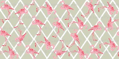 Pink Flamingos on Tan