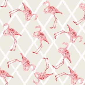 Flamingos on Tan