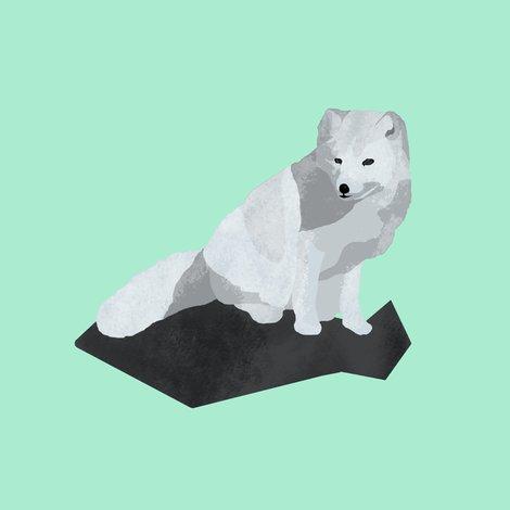 Arcticfox__small__shop_preview
