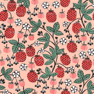 strawberry garden // strawberries blush pink fruits fruit summer sweet