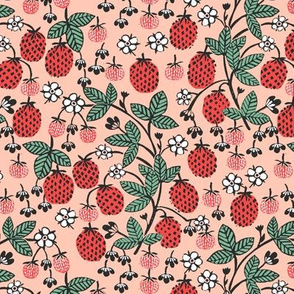strawberry garden // strawberries blush pink fruits fruit summer sweet