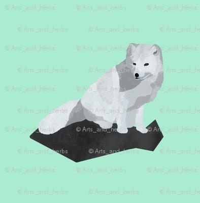 Arctic Fox (small)