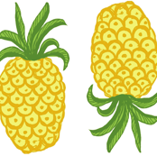 Pineapple Topsy Turvy