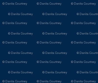 Danita's University of Michigan Blue - Solid