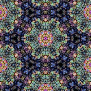 Leaf Kaleidoscope a