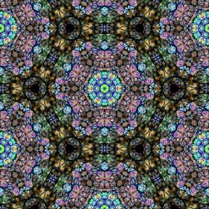 Leaf Kaleidoscope c