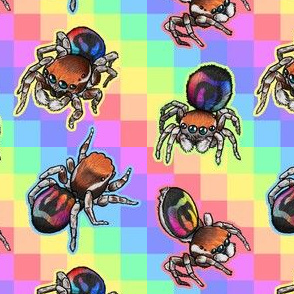 Rainbow Jumping Spider tiles