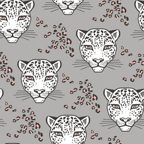 Leopard Head  Big Cat Cats Grey