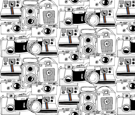 Rrrrrvintage_cameras_shop_preview
