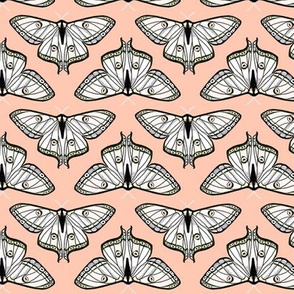 luna moth // blush pink moth kids girls spring sweet butterfly butterflies girls