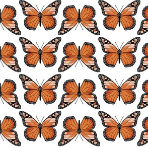 monarch butterflies // butterfly orange spring florals flower insect