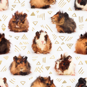 Lots of Little Guinea Pigs