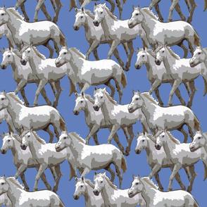 horses_color_6380BB