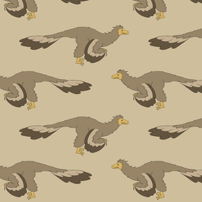 raptor_suite_brown