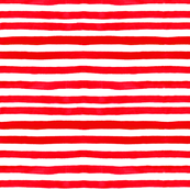 America Red Flag Stripes