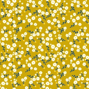 Autumn Yellow Daisy