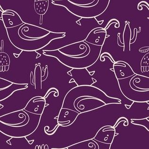 Gambel's quail purple