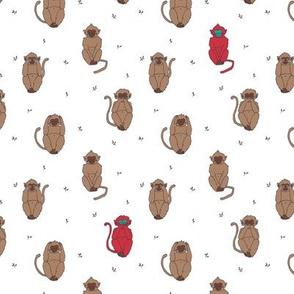 Wise red monkeys print