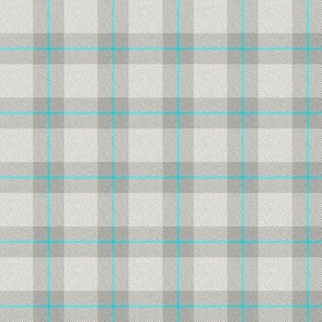 Grey/Blue Plaid