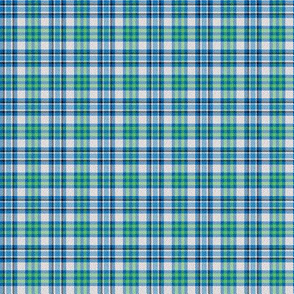 Blue/Green/White/Black Plaid