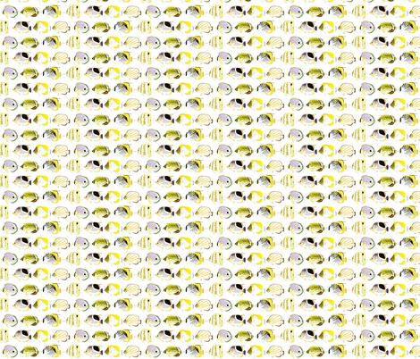 7 Butterflyfish fabric by combatfish on Spoonflower - custom fabric