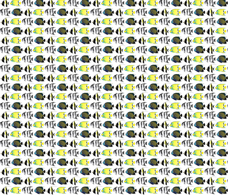 Four Angelfish fabric by combatfish on Spoonflower - custom fabric